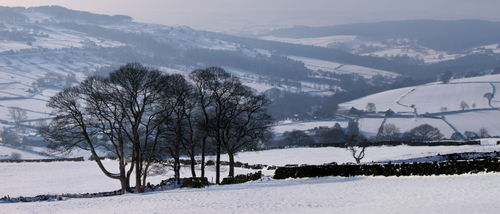 Winter in Bradfield Dale © Roger Butterfield
