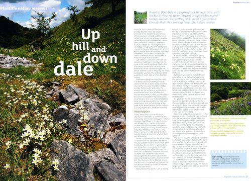 Plantlife Magazine article about Deep Dale, Derbyshire.