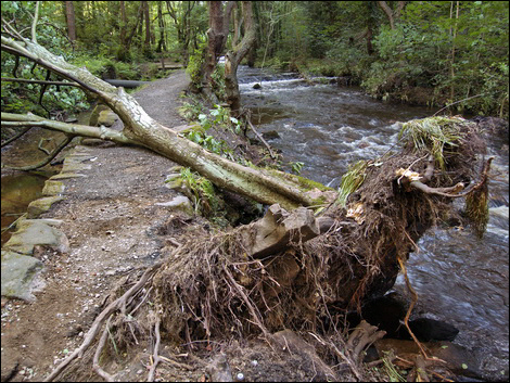 Rivelin flood damage © Roger Butterfield