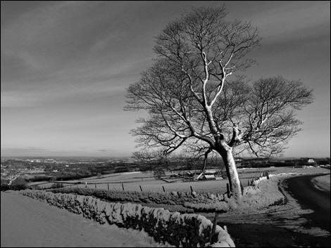 Near Yarncliffe House Farm, Sheffield © Roger Butterfield