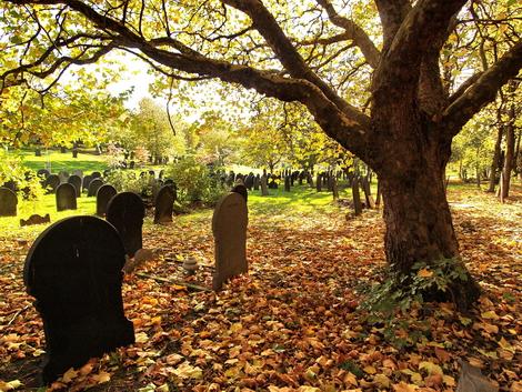 Burngreave Cemetery, Sheffield © Roger Butterfield